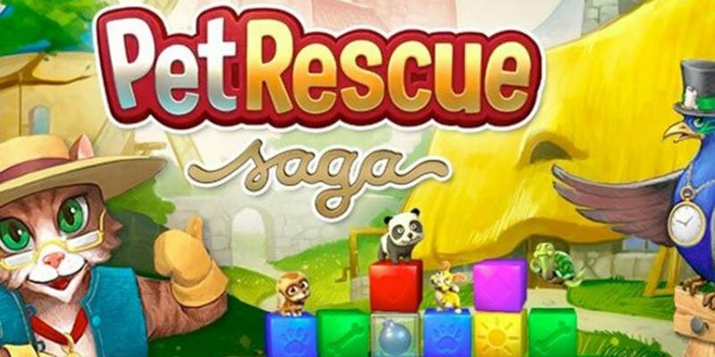 Pet Rescue recebe um convidado muito especial